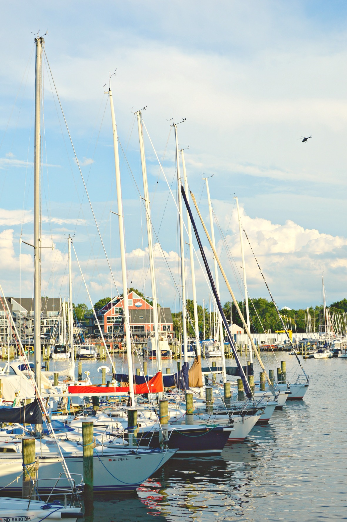 afternoon in annapolis 10